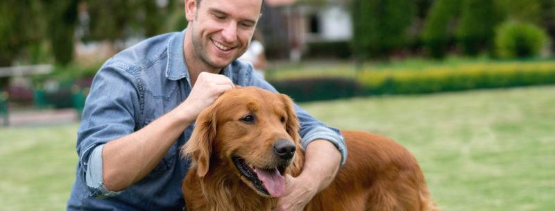 corso benessere animale